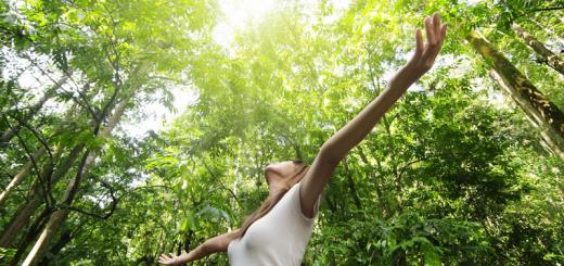 Wellness And Nature