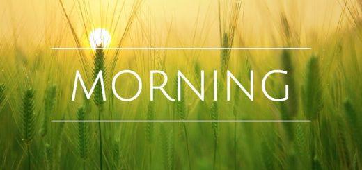 cheerful morning